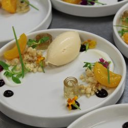 Plated Food