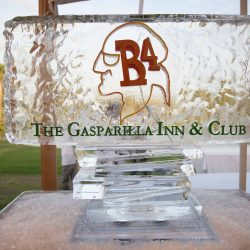 Gasparilla Logo Made Out of Ice