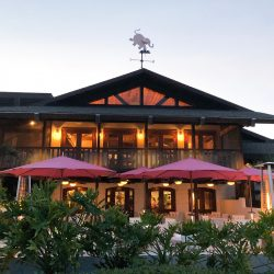 Pink Elephant Restaurant Storefront