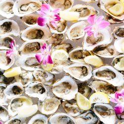 Gasparilla BBQ Oysters